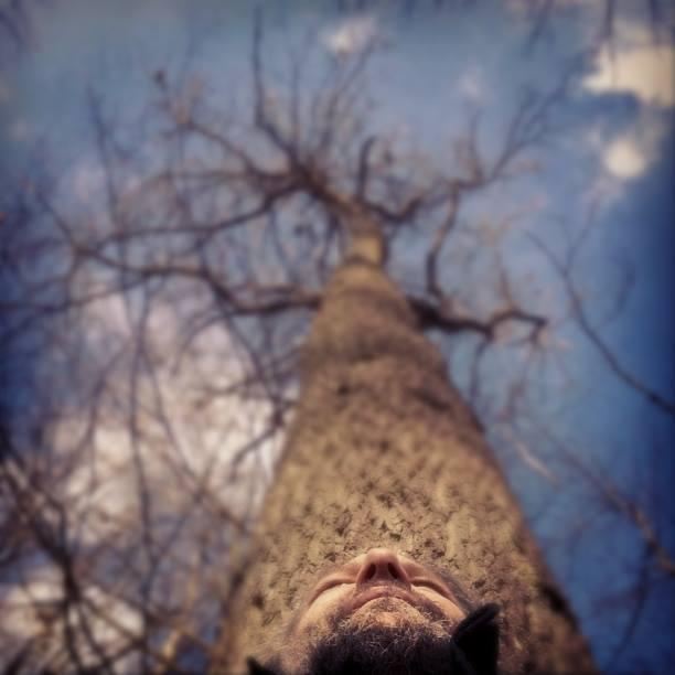 arbrescre